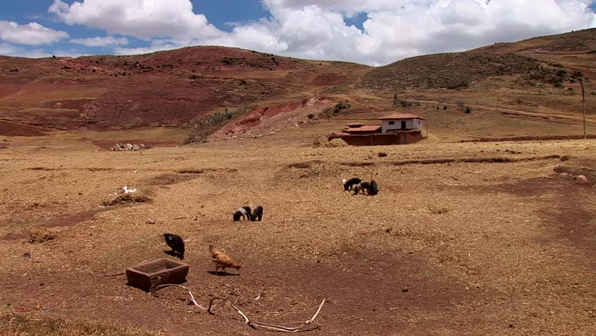 Video footage of a Farm in the Andes of Peru, near Cusco | Shutterstock HD Video #10006340