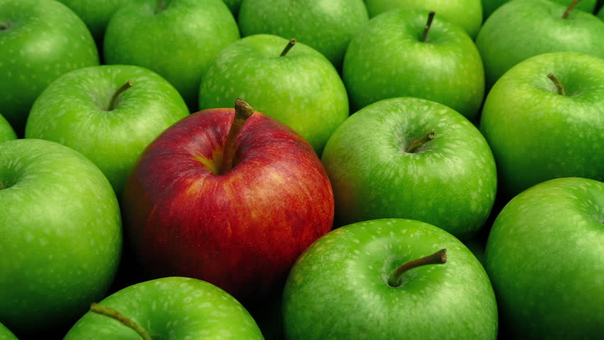 Red Apple In Green Apples - Business Concept | Shutterstock HD Video #1006775500