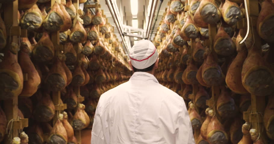 In a ham factory, a man in charge of quality control walks between the hams and controls, the perfume and the certified Italian quality. Concept of: tradition, Italy, food, ham