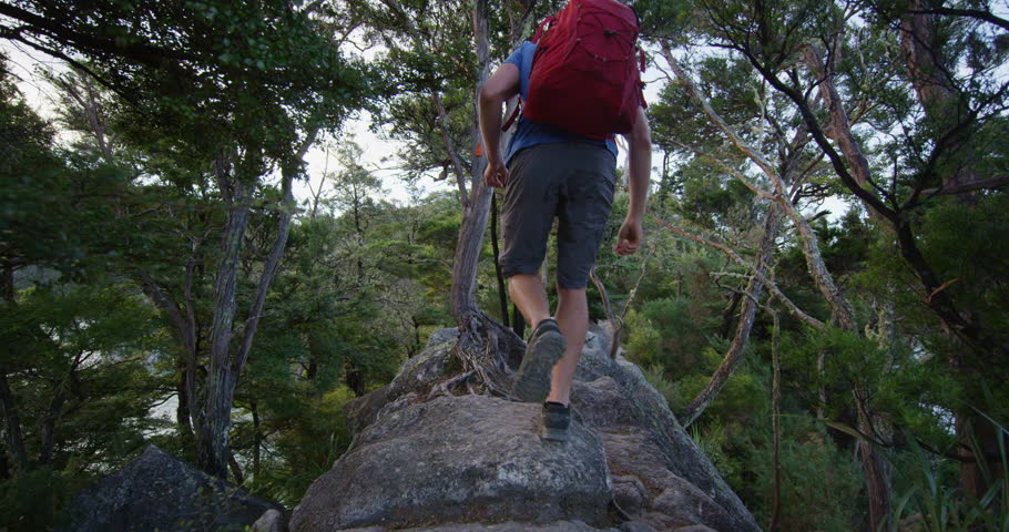 New Zealand Tramping man hiking in Abel Tasman National Park forest. Young male backpacker on travel vacation hike on Abel Tasman Coast Track, one of the Great Walks of New Zealand. SLOW MOTION. #1006989730