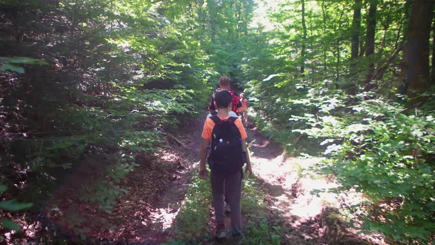 Following a group of kids walking in a forest, gimbal shot | Shutterstock HD Video #1007001820