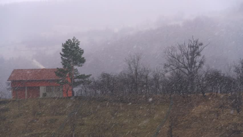 The first snow gently falling on trees and hill