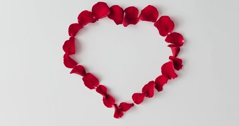 Red rose petals forming heart shape with heartbeats on white background. Flat lay love concept. Stop motion animation.
