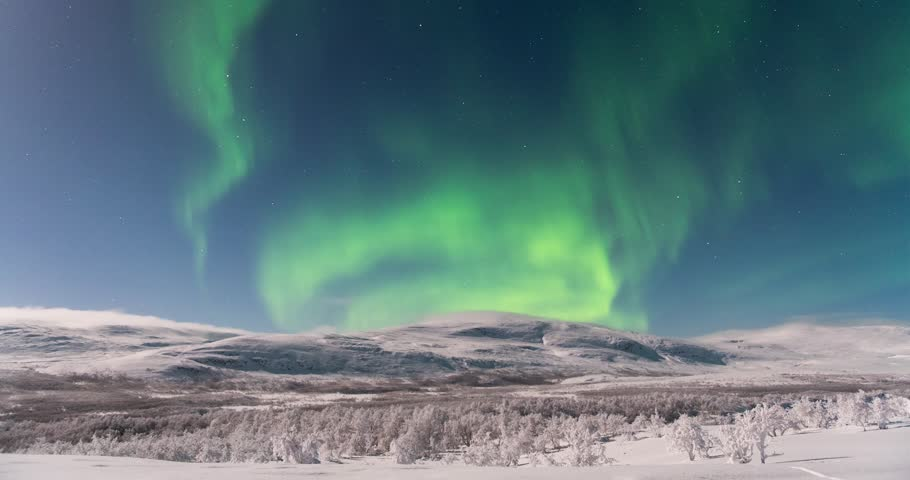 Timelapse of Aurora Borealis over arctic moutain and small birch trees in snow