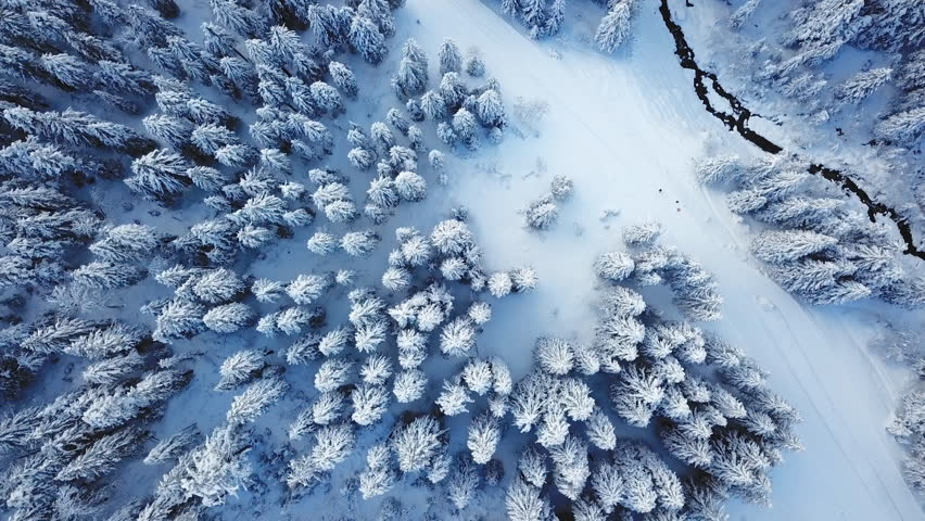 Winter season snowy mountain forest aerial shot / Breathtaking natural landscape, frozen forest and dark mountain river #1007443450