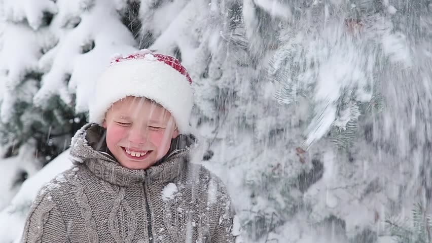 Cute little boy for photo under huge snowy branches of old evergreen pine.  Portrait of b1984de2289c