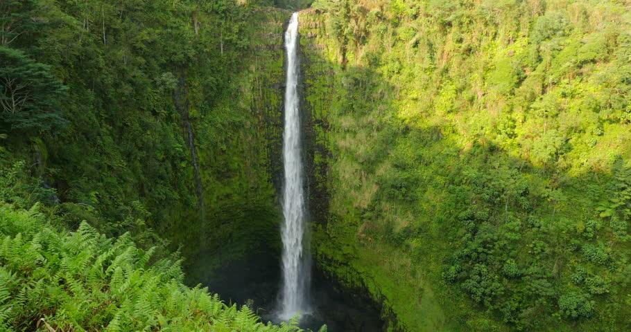 Waterfall of Hawaii Island Akaka #10077350