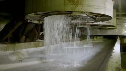 Crystal sugar moving along the conveyor belt at a sugar refinery. 4K