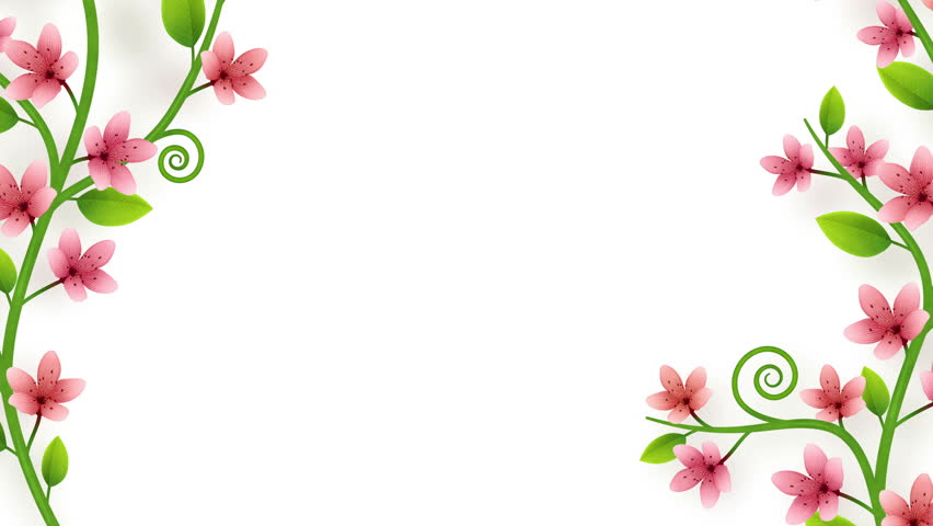Growing flower ornament on white background with alpha | Shutterstock HD Video #1008287350