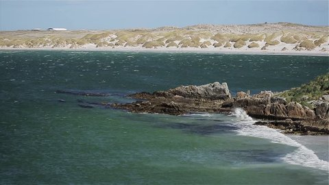 Beach in Falkland Islands (Malvinas Islands)