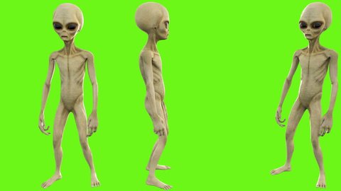 Alien counts up to three. Loopable animation on green screen. 4k.