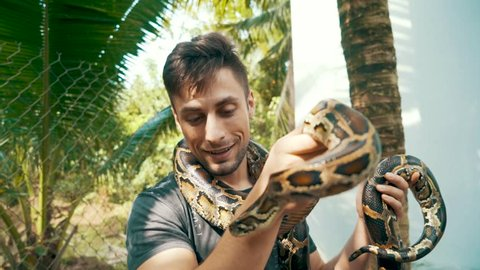 Young attractive male tourist stares and smiles at a Burmese python while holding it in his hands and around his neck