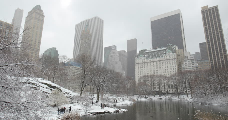 New York City Central Park in snow | Shutterstock HD Video #1008879680