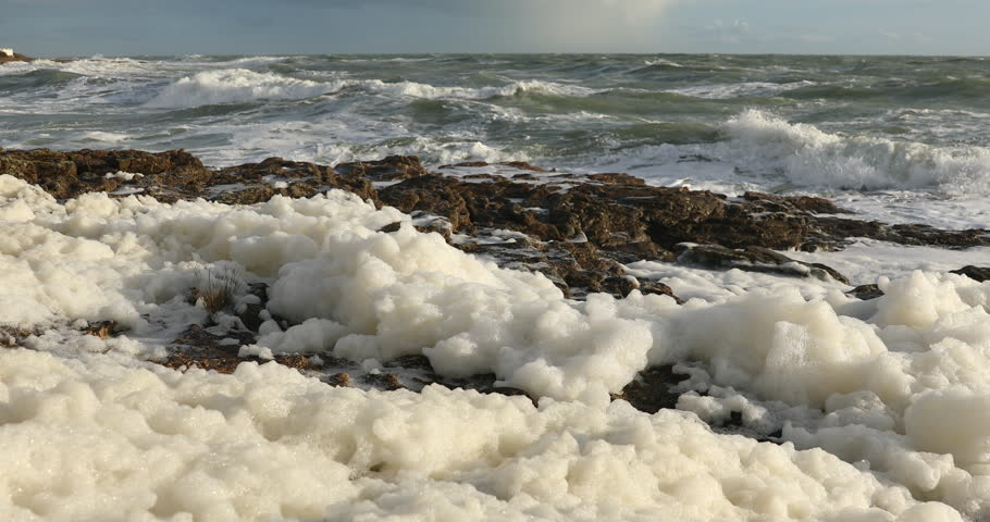 Sea foam in the wind