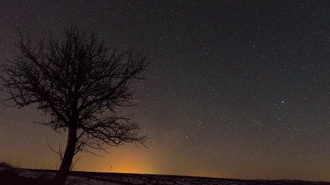 Star Trail Galaxy Spins Behind Joshua Tree in Stunning Night Desert Timelapse