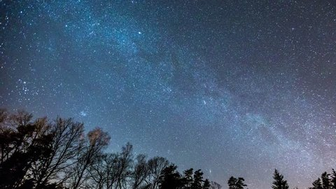 4k time-lapse with Milky Way and starry sky over forest. European sky at spring. 3840x2160