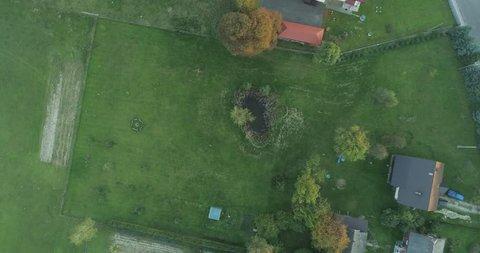 Aerial shot of pond in the garden, autumn, 4K