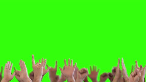 Cheering Hands Green Screen. Cheering crowd happy waving their hands on green screen background