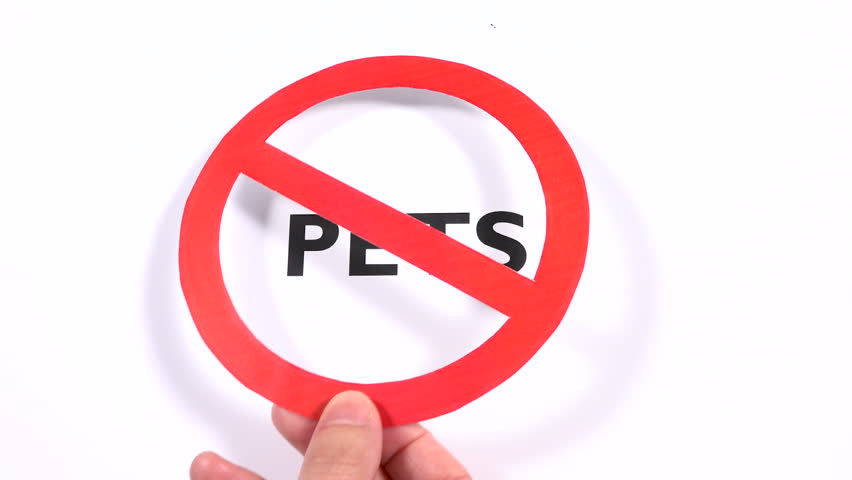 PETS prohibition symbol, refuse animal, dogs ban writing copy space. No entrance, zoophobia and hygiene, domestic friends negative sign with white background. Concept of selection and exclusion