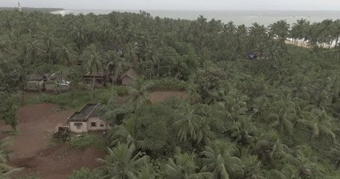 A drone flying over palm trees near a beach with houses and small farm fields in the view.