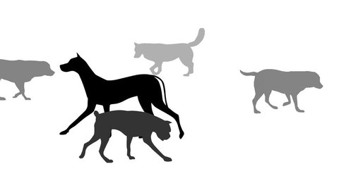 Dog silhouettes, animation on the white background