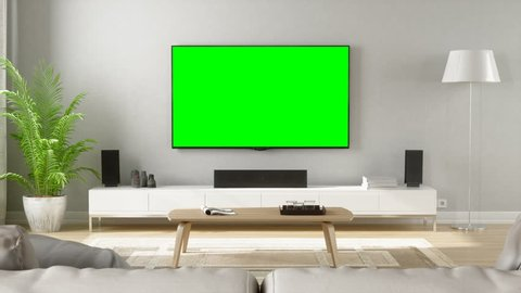Contemporary Living Room With Home Entertainment System