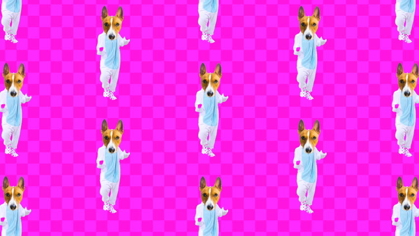 Minimal Motion design art. Dancing Dog in Pajamas