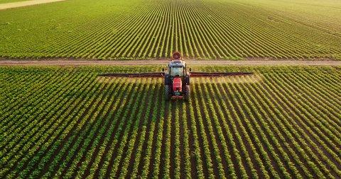 Aerial drone shot of a farmer spraying soybean fields