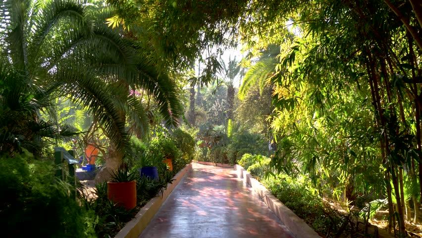 Majorelle Garden in Marrakech, Morocco. Gimbal stabilized tracking shot