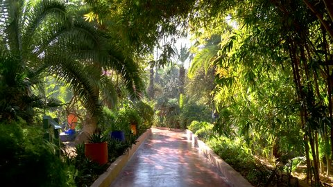 Majorelle Garden in Marrakech, Morocco. Gimbal stabilized tracking shot