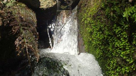 Following spring water watercourse along stream waterfalls