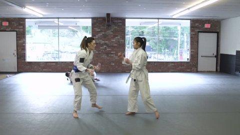 Young women practicing Jiu-jitsu