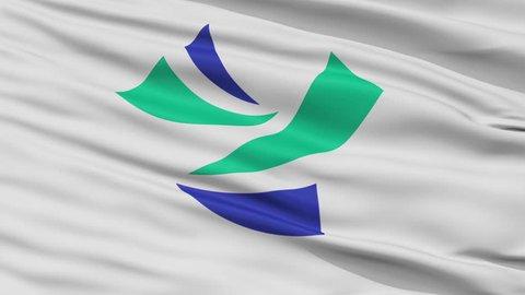 Yoshinogawa close up flag, Tokushima prefecture, realistic animation seamless loop - 10 seconds long