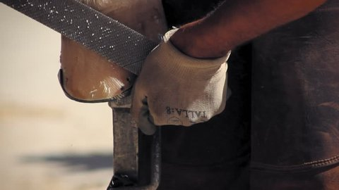 Close up of farrier using a rasp to smooth out any uneven spots in the hoof wall.