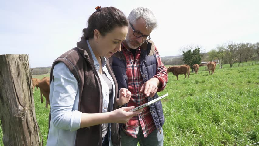 Couple of stock breeders using tablet in field | Shutterstock HD Video #1010236310