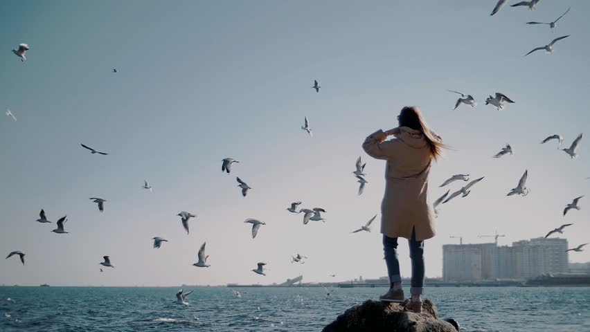 Epic panorama of the city and the sea with a girl and sea birds