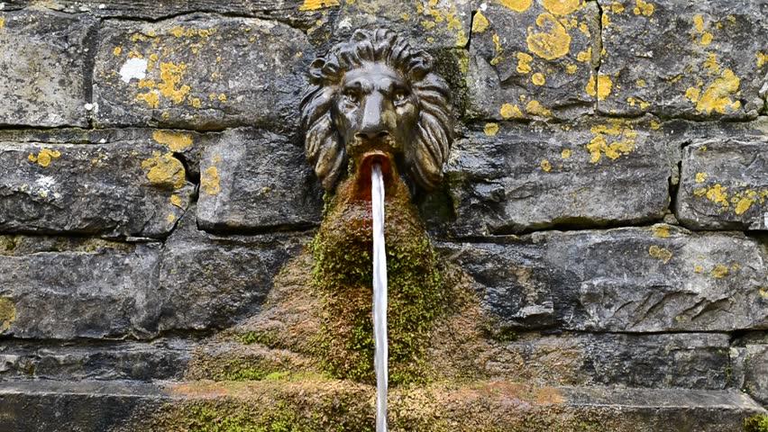 Chalice Well Garden, Glastonbury, England, UK