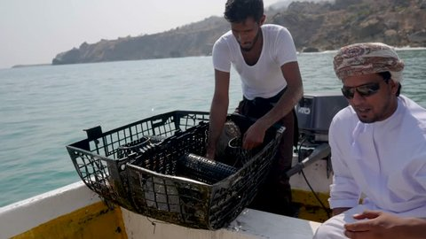 Salalah, NA / Oman - 04 10 2018: Salalah, Oman April 2018: Local fisherman empties a lobster trap at the delight of the tourists