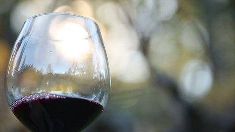 Swirling wine in glass