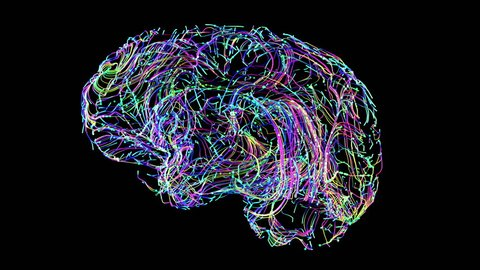 brain connections colorful