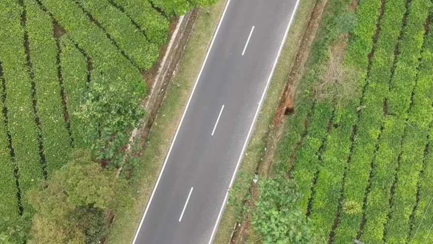 Cinematic road in village moving forward view from 90degree drone