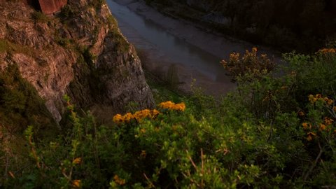 Tilt up from flowers on cliff to Clifton Suspension Bridge. Shot during a spring sunset with a hot air ballon in the sky