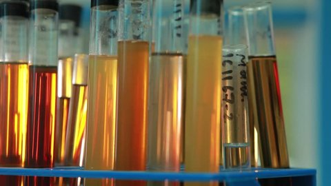 oil additive fuel