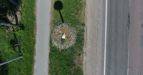 Aerial view nest of white crane bird on pole above highway with passing cars