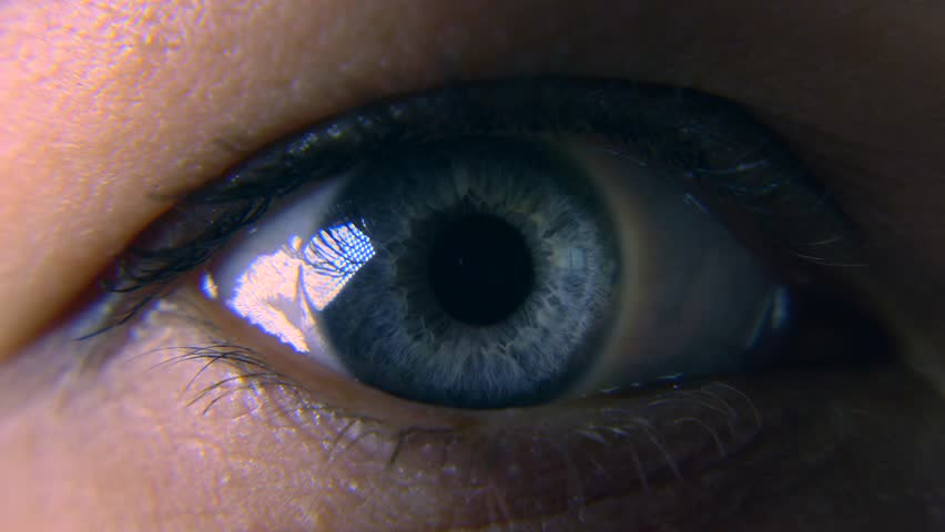 Close-up. Macro Blue Female Human Eye. Pupil Cornea Iris Eyeball Eyelashes. Blink Open Closed. 30p Slow motion 1/2 Real Time Speed 60p | Shutterstock HD Video #1011459740