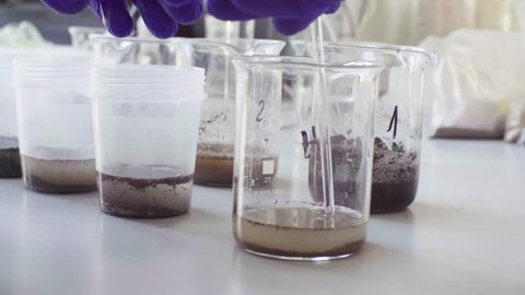 Close up hands of the scientist in laboratory mixing samples of the soil with water in the chemical beakers