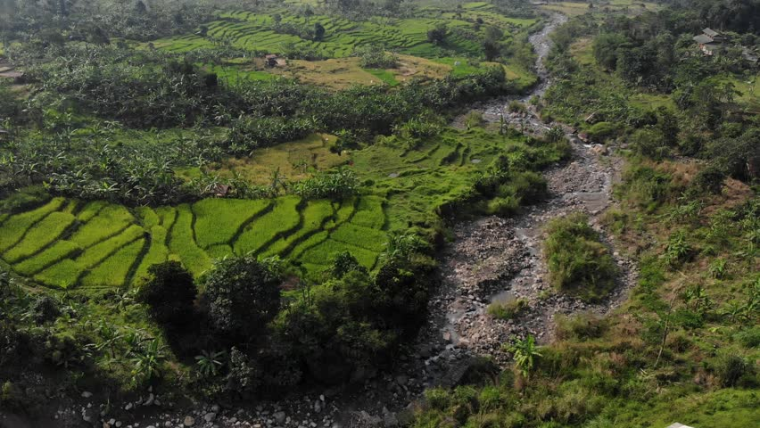 Ungraded Aerial Video Clip of A Rice Paddy Valley with Mountains and River slow panned shot | Shutterstock HD Video #1011771050