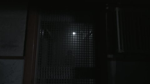 Insane man in cell in insane asylum running into bars while screaming