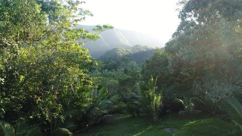 Lens flare with Flight over Mayan Mountains in Central American Jungles