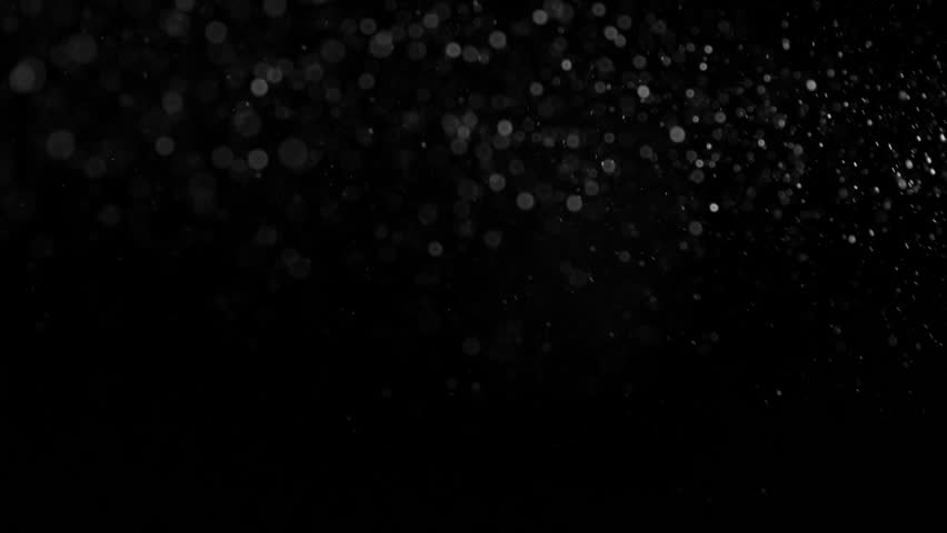 Natural Organic Dust Particles Floating On Black Background. Dynamic Dust Particles Randomly Float In Space With Slow Motion. Shimmering Glittering Particles With Bokeh. Real White Particles In Air. | Shutterstock HD Video #1011848240